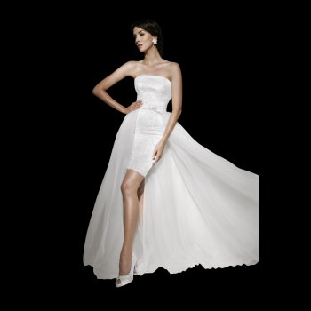 DENTELLE Short Fitted Lace Wedding Dress With Detachable Train